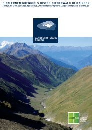 RZ Inhalt A5 64 Seiten 2011-12.indd - Landschaftspark Binntal