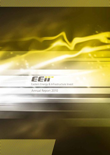 Annual Report 2010 - EEII AG