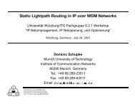 Static Lightpath Routing in IP over WDM Networks - Lehrstuhl für ...