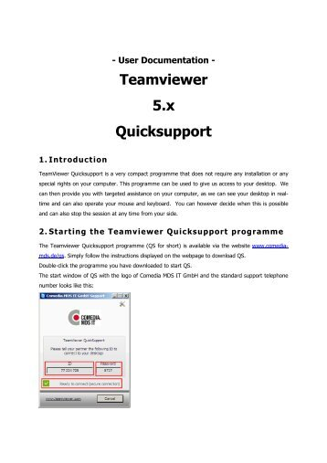 What Is Teamviewer Gmbh