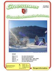 Ausgabe 4 - Februar 2009 - Gemeinde Gnesau