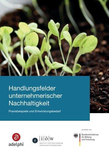 Handlungsfelder unternehmerischer Nachhaltigkeit - Meta-Analyse