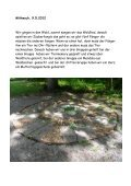 Waldwoche der Schule Eggenwil - Seite 3