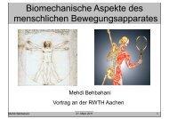 Biomechanische Aspekte des menschlichen Bewegungsapparates