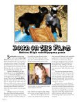 Sabino High students raise pygmy goats - Assistance League of ... - Page 4