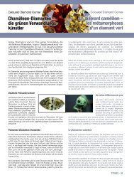 Chamäleon-Diamanten - Brillante Farben der Natur
