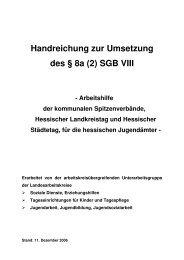Handreichung zur Umsetzung des § 8a (2) SGB VIII