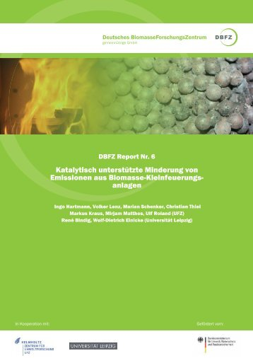 DBFZ-Report Nr. 6 - Deutsches Biomasseforschungszentrum