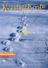 Kiesteichente Dezember 2011 - Freie Waldorfschule Mannheim