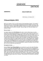 Chlauschlöpfen 2010 - Gemeinde Dintikon