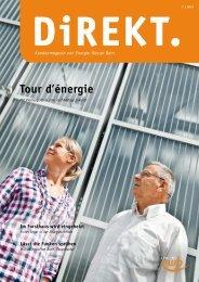 DiREKT 2/2012 - Energie Wasser Bern