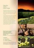 Vipavska dolina – Toliko vsega! Vipava Valley – There's More Than ... - Page 2