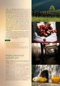 Vipavska dolina – Toliko vsega! Vipava Valley – There's More Than ... - Page 4