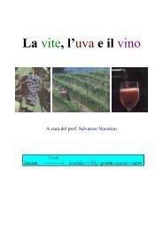 La vite, l'uva e il vino