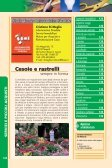 INZINZN10600-servizi.. - Page 2