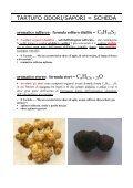 Abbinamento Tartufo e Vino - Degusta Giovane - Osvaldo Murri ... - Page 4