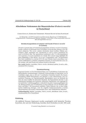 Allochthone Vorkommen der Mauereidechse (Podarcis ... - Lacerta