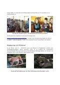 Tiere live - Grundschule Weißenstadt - Seite 6