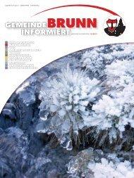 Gemeindezeitung 10/2012 - Brunn am Gebirge
