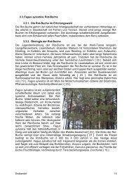 Studie Breitenstein Teil 2