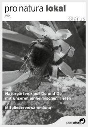Pro Natura | Glarus