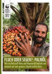 Fluch oder Segen?: Palmöl - Kritischer Konsum