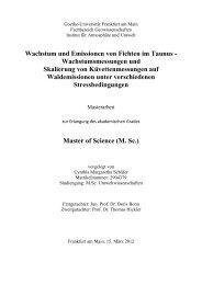 Wachstum und Emissionen von Fichten im Taunus - Fachbereich ...