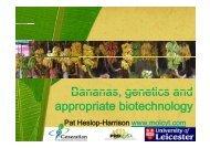 Bananas genetics and Bananas, genetics and appropriate ...