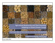 Agricultural Biodiversity and Plant Breeding: Adapting to Global ...