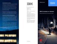 IBM e-business on demand