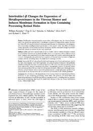 Interleukin-l-/3 Changes the Expression of Metalloproteinases in the ...