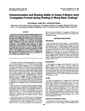 Characterization and Rooting Ability of Indole-3 ... - Plant Physiology