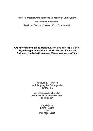 PDF 1.275kB - TOBIAS-lib - Universität Tübingen