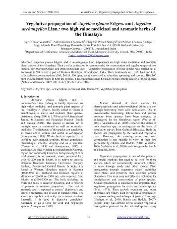 Vegetative propagation of Angelica glauca Edgew. and Angelica ...