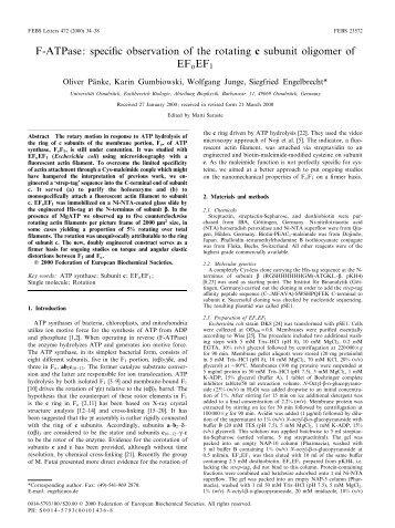 F-ATPase - Fachbereich 5 Biologie