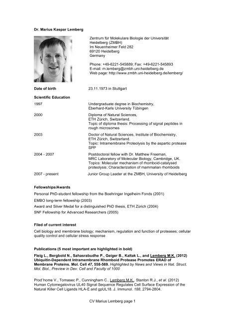 cv_lember_marius (PDF / 162.8 KB) - CellNetworks