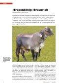 CHbraunvieh 01-2013 [7.28 MB] - Schweizer Braunviehzuchtverband - Seite 4