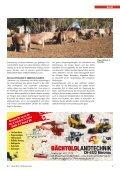 CHbraunvieh 01-2013 [7.28 MB] - Schweizer Braunviehzuchtverband - Seite 5