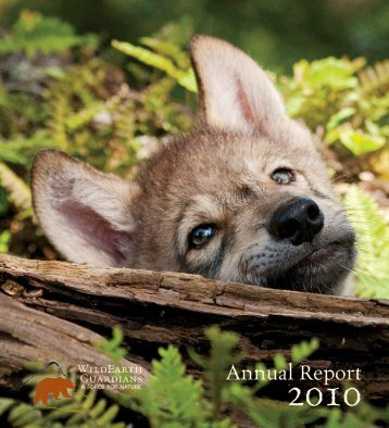 View our 2010 Annual Report - WildEarth Guardians