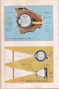 Aspectos físicos de la luz - FAU - Page 6