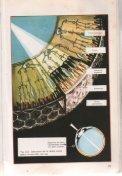 Aspectos físicos de la luz - FAU - Page 7