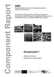 pdf-Download, 2,3 mb - RISE