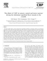 The effects of 5-HT on sensory, central and motor neurons driving ...