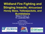 Wildland Fire Fighting and Stinging Insects; Africanized Honey Bees ...