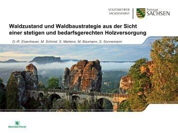 Waldzustand und Waldbaustrategie aus der ... - Freistaat Sachsen