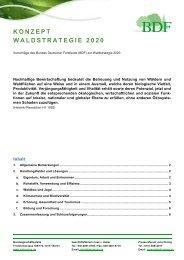 BDF positioniert sich zum 1. Entwurf der Waldstrategie