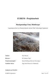 EUREM - Projektarbeit - Multikraft
