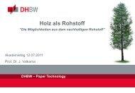 Holz als Rohstoff - DHBW Karlsruhe