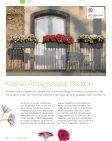 Magazin - lechuza - Seite 6