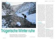 Schweizer Nationalpark: Trügerische Winterruh... - AUFRAD.CH Home